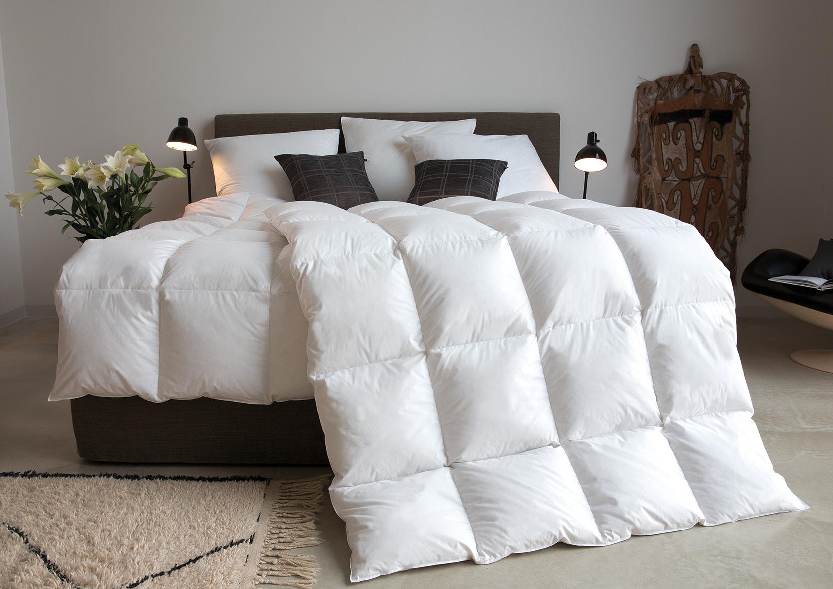 bettdecken 100 daunen kopfkissen weich bettw sche eule 135x200 schlafzimmer lampe englisch kein. Black Bedroom Furniture Sets. Home Design Ideas
